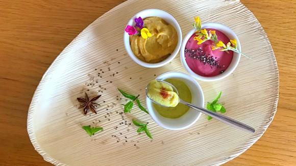 Hummus tricolor #hummusday