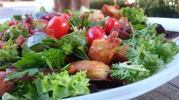 Panzanella with Salanova lettuce