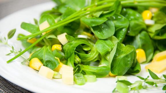 Salát z polníčku a kukuřice se sýrem gouda