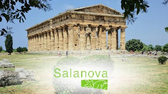 Viaggiando in Italia tra colture e culture: la lattuga - Salanova®-  e il Cilento