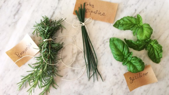 How to preserve fresh herbs?